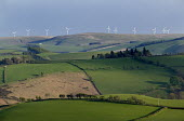 Wind farms in North West Wales - Paul Box - 2000s,2005,agricultural,agriculture,alternative,Alternative Energy,arable,capitalism,capitalist,country,countryside,EBF,EBF Economy,Economic,Economy,ELECTRICAL,electricity,energy,eni environmental iss