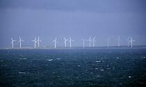 Coastal wind farm, Rosslare , Ireland. - Paul Box - 2000s,2005,Alternative Energy,capitalism,capitalist,coast,coastal,coasts,costal,country,countryside,EBF,EBF Economy,EBF Economy business ,Economic,Economy,ELECTRICAL,electricity,ENERGY,energy supply,e