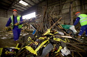 South London, Waste disposal centre. Workers sort the waste for recyclable wood. - Paul Box - 15-12-2005
