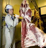 Working in a meat processing plant, Wales. Many of the workers are from Portugal, Greece and Poland. The meat is produced solely for Tesco - Paul Box - 2000s,2006,abattoir,abattoirs,agency,beef,bovine,butchery,by hand,capitalism,capitalist,Carcass,carcasses,cut,cutting,Diaspora,eastern,EBF,Economic,Economy,employee,employees,Employment,eu,european,eu