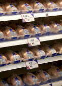 Fresh Chickens in a chiller in Tesco supermarket. - Paul Box - 2000s,2006,bought,buy,buyer,buyers,buying,CHICKEN,chicken chickens,Chickens,commodities,commodity,consumer,consumers,customer,customers,EBF Economy,everyday,food,FOODS,fresh meat,goods,industrial farm