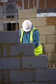 Construction worker on a building site, Wiltshire. A brick layer at work. - Paul Box - 2000s,2006,blocks,BRICK,bricklayer,bricklayers,bricklaying,bricks,build,BUILDER,builders,building,building site,BUILDINGS,cold,construction,Construction Industry,EBF Economy,hard hat,hat,hats,housing,