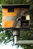 A vandalised speed camera. - Paul Box - 2000s,2007,anti social behavior,anti social behaviour,anti socialanti social behavior,antisocial,antisocial behaviour,antisocialvandalise,antisocialvandalize,behavior,behaviour,broken,burnt,Burnt Out,