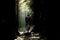 A cyclist mountain biking in the Afan Forest Park, Wales. - Paul Box - 08-08-2006