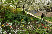 Meanwhile Gardens, a community run open space in North Kensington, London. - Philip Wolmuth - 26-04-2006