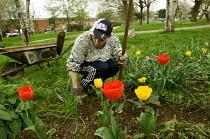 Gardener Joe Ambrosino working at Meanwhile Gardens, a community run open space in North Kensington, London. - Philip Wolmuth - 26-04-2006