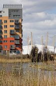 A pond in the Ecology Park at Greenwich Millennium Village and the Millennium Dome, London. - Philip Wolmuth - 21-03-2007