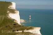Lighthouse at Beachy Head and walkers on the South Downs Way, East Sussex. - Philip Wolmuth - 08-04-2007
