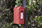 Letter box on a telegraph pole on a country road in Buckinghamshire - Philip Wolmuth - ,2000s,2008,EBF Economy,highway,Letter box,Letter boxes,Letterbox,Letterboxes,MAIL,pillar,POST,Post Office,post box,post boxes,Post Office,postal,postbox,postboxes,public services,road,ROADS,ROYAL,roy