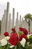 Roses at the 7/7 Monument in Hyde Park. The memorial to the 52 people killed in the London bombings of 7 July 2005 was designed by architects Kevin Carmody and Andy Groarke. - Philip Wolmuth - 08-07-2009