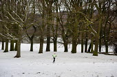 A jogger runs on Hampstead Heath in the snow, London. - Philip Wolmuth - 2010,2010s,cities,city,cold,exercise,exercises,exercising,freezing,frozen,jogger,joggers,jogging,Leisure,LFL,LIFE,outdoors,Park,parks,PEOPLE,precipitation,RECREATION,RECREATIONAL,run,runner,running,se