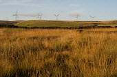 Some of the 26 turbines on Scout Moor outside Rochdale, Lancashire, the largest onshore wind farm in the UK. It is run by Peel Energy and provides energy for 40,000 homes. - Philip Wolmuth - 2010,2010s,alternative energy,carbon,Climate Change,CO2,country,countryside,EBF,Economic,Economy,ELECTRICAL,electricity,emissions,energy,eni,ENI environmental issues,environment,Environmental Issues,f