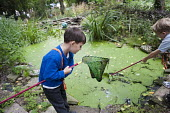 Children supervised by a teacher and parent volunteers, collect snails from a pond in woodland within the school grounds during the lunch hour break. The Orchard Club at Malorees Infants School, Brent... - Philip Wolmuth - 13-07-2011