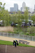 Scattering grass seed, Landscaping work in the London 2012 Olympic Park. - Philip Wolmuth - 05-05-2012