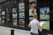 A tourist reading a map by an outdoor photographic exhibition organised by the Photographers Gallery in Oxford Street during the London 2012 Olympic Games. - Philip Wolmuth - 08-08-2012