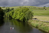 Two children swim in the river Wharfe in Burnsall, Yorkshire Dales National Park. - Philip Wolmuth - 09-08-2013