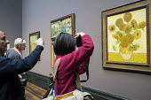 Visitors to the National Gallery London take pictures of Sunflowers by Van Gogh following the lifting of restrictions on the use of smartphones and cameras - Philip Wolmuth - 2010s,2014,ACE,amateur,art,Art Gallery,arts,arts culture,artwork,artworks,camera,camera cameras,cameras,CELLULAR,communicating,communication,exhibition,fine art,Gallery,gallery galleries,hoildaymakers