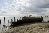 Decaying wooden hull of a ship at a disused dock on the Kent shore of the Thames estuary. - Philip Wolmuth - 23-08-2014