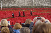 Art installation of red ceramic poppies by Paul Cummins commemorating British and colonial soldiers who died in WW1. Crowds mark Armistice Day at the Tower of London 100 years after the start of the F... - Philip Wolmuth - 11-11-2014