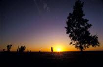 Summer Sunset on an Estancia in Uruguay. - Paul Mattsson - 1980s,1986,america,american,americans,Americas,Colourful,EBF economy,farm,farmed,Farming,Grasslands,hemisphere,Landscape,LANDSCAPES,Latin America,outdoors,outside,Pampas,producer,Ranch,Ranching,Rural,