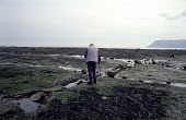 Man with Walking Stick walks across to the Sea at Low Tide, Robin Hoods Bay, North Yorkshire Coast. - Paul Mattsson - 28-12-1992