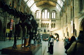 Visitors at the Natural History Museum, London - Joanne O'Brien - 20021024