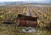 Vineyard in Burgundy, France. A homemade incinerator for dead vines which are removed during winter when the vines are dormant. - Joanne O'Brien - Burgundy,2000s,2008,agricultural,agriculture,Burgundy,capitalism,capitalist,Chardonnay,crop,crops,dead,EBF,EBF economy,Economic,Economy,eu,Europe,european,europeans,eurozone,farm,farmed,farming,field,