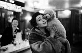 Well dressed woman with her pet poodle in a Mayfair bar in London, 1959. - Alan Vines - ,&,1950s,1959,AFFLUENCE,AFFLUENT,animal,animals,bar,BARS,Bourgeoisie,canine,cities,city,coat,dog,dogs,elite,elitism,EQUALITY,FEMALE,fur,high,high income,income,INCOMES,INEQUALITY,leisure,LFL,LIFE,life