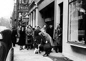 People in Soho, including a man in a bow-tie, queueing outside Chez Albert, Boucherie Chevaline Bruxelloise French butchers to buy horsemeat in 1952; rations for other meat products were still in effe... - Elizabeth Chat - 11-07-1952