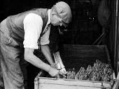 """Agricultural worker packing freshly picked asparagus or """"grass"""", as it is called locally, into wicker baskets or flats, Evesham, Worcestershire 1947 - Felix H. Man - 1940s,1947,agricultural,agriculture,asparagus,capitalism,capitalist,crop,crops,EBF,Economic,Economy,employee,employees,Employment,FARM,Farm Worker,farm workers,farmed,farmer,farmers,farmhand,farmhands"""