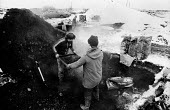 Striking miners 'riddling' on slag heaps of coal waste in the snow near South Kirby, Yorkshire in the winter of the miners strike; trying to find coal to heat their homes. - John Harris - 17-01-1985
