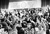 Delegates voting, AAM AGM, Sheffield 1987, Stop Apartheid Boycott Shell banner in the background - John Harris - 21-05-1987