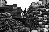 Covent Garden fruit and vegetable market, London, 1971. Covent Garden porter at work. - Mike Tull - 1970s,1971,by hand,cities,city,distributing,distribution,EARNINGS,EBF,Economic,Economy,employee,employees,Employment,food,FOODS,fresh,Garden,GARDENS,Income,INCOMES,inequality,job,jobs,LBR,lifting,livi