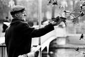 Man with birds in St James Park, London in the early 1970s - Report Archive - ,1970,1970s,adult,adults,age,ageing population,animal,animals,bird,birds,cities,city,elderly,ENV Environment,environment,feed,feeding,feeds,flat cap,Leisure,LFL,LIFE,London,male,man,MATURE,men,nature,