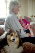 A retired woman with her dog, visiting her friend in a council house in Caithness, Scotland. - Rob Bremner - 1990s,1999,adult,adults,age,ageing population,animal,animals,armchair,armchairs,canine,canines,council,dog,dogs,elderly,FEMALE,friend,friends,friendship,friendships,home,homes,house,houses,housing,lfL