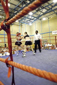 Woman boxer Shanee Martin (white top) fighting Juliette Winters (black top) for the British Masters Female Super Flyweight Title, At Goresbrook Leisure Centre in Dagenham, London. - Rogan Macdonald - (WSO),2000s,2006,audience,audiences,BAME,BAMEs,bme,BME Black minority ethnic,bmes,bout,bouts,boxer,boxers,boxing,Boxing Match,boxing ring,braid,braided,British,cities,city,classes,combat,Council,Dagen
