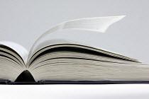Book - Roy Peters - 25-06-2005