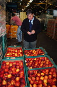 Trading Standards Inspector inspecting fruit and vegetables at Spitalfields Market - Stefano Cagnoni - 03-09-2004
