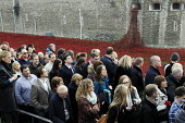 Visitors to the Tower of London art installation on Armistice Day, the 100th Anniversary of the year in which the First World War began. The moat displays 888,246 ceramic poppies, the completed art in... - Stefano Cagnoni - WW2,1st,2010s,2014,ACE,Anniversary,Armistice,art,artwork,artworks,Blood Swept Lands and Seas of Red,by,castle,cities,city,COLOR,colorful,colorfull,colors,colour,colourful,colours,COMMEMORATE,COMMEMORA