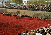 Armistice Day on the 100th Anniversary of the year in which the First World War began. Crowds gather in preparation for the Two Minute Silence to remember the war dead at the Tower of London. In the m... - Stefano Cagnoni - 11-11-2014