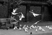 Old lady feeding birds in London park, 1991 - Stefano Cagnoni - 17-07-1991