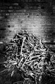 Human bones from victims of the genocide of 1994 of Tutsis by Hutu militia are collected in a pile inside the church at Nyamata, Rwanda, 2003 - Steven Langdon - 03-08-2003