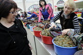 A female stallholder shows a customer giant live black tiger prawns in the fish market in Odessa. - Janina Struk - 28-03-2012