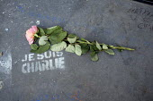 Graffiti reading Je Suis Charlie and a single rose placed in memory of those journalists who died in the terrorist attack at Charlie Hebdo, Place de la Republique, Paris. - Janina Struk - 04-02-2015