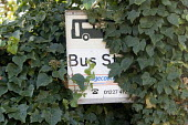 Partially obscured Bus Stop sign in Upstreet, a village in rural Kent. - John Sturrock - 16-11-2005