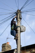 British Telecom engineer in protective cothing working on line connections to a telegraph pole - John Sturrock - 31-01-2006