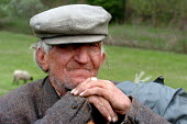 Elderly shepherd. Pancevo, Serbia 2004 - Andrija Ilic - 2000s,2004,age,ageing population,AGRICULTURAL,agriculture,ANIMAL,animals,Balkan,balkans,capitalism,capitalist,EBF,EBF Economy,Economic,Economy,elderly,employee,employees,Employment,eu,europe,european,