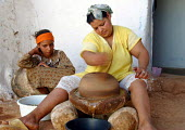 Berber women in Morocco harvest argan nuts from Iron Wood trees for medicinal and culinary use. Argan oil claims many benefits including treatment of heart disease and is particularly popular in Franc... - Boris Heger - 01-09-2003