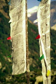 Buddhist prayer flags in a Himalayan village. - Howard Davies - 1990s,1991,ace arts culture,asia,asian,asians,blow,blowing,buddha,buddhism,Buddhist,buddhists,cloth,cloths,colorful,country,countryside,Darchor,developing,flag,flags,Himalaya,Himalayas,indian,indian s