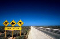 Animal warning road signs on the Nullarbor Plain, in South Australia. - Howard Davies - 03-05-1985